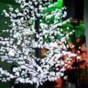 Peuplier lumineux à LED